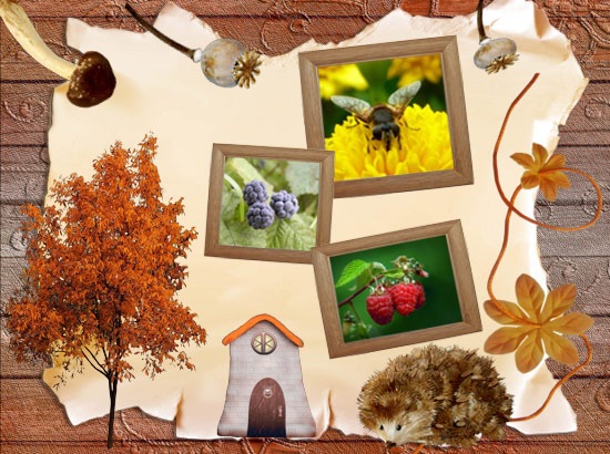http://fotocollage.ru/images/Ex05.jpg